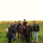 ワイン畑(ニアシュタイン)